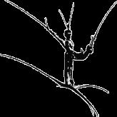 CND Confédération Nationale de Danse
